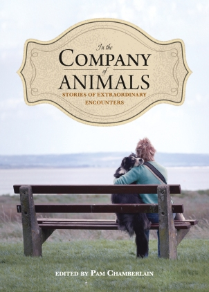 In the Company of Animals Book cover
